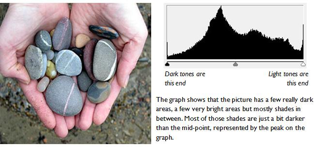 photography basics - the camera histogram. Example using a well exposed photo