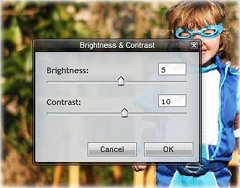 brightness and contrast dialog box