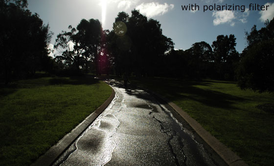 Example of circular polarizing filter used to reduce reflections in photography - after