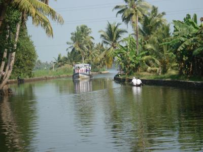 Alappuzha, The venice of the east
