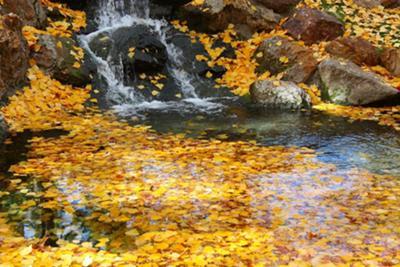Small Garden Waterfall Pond Kit, Patio & Garden Waterfalls |Gentle Waterfall Pond
