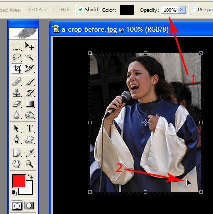photo shop crop tool 2