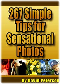 267 digital photography tips –cover photo