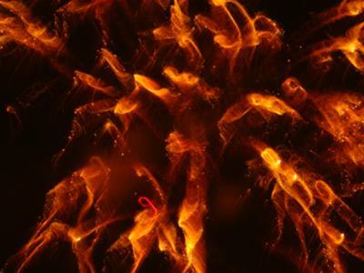 Hell Fire 2