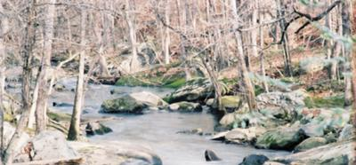 Frost Creek