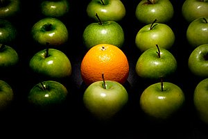 creative photo of apples and an orange