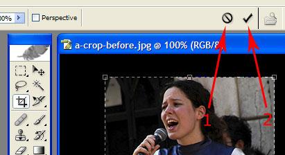 photo shop crop tool 4