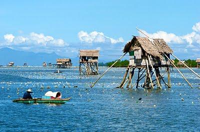 Seaweed Farmer, Philippines